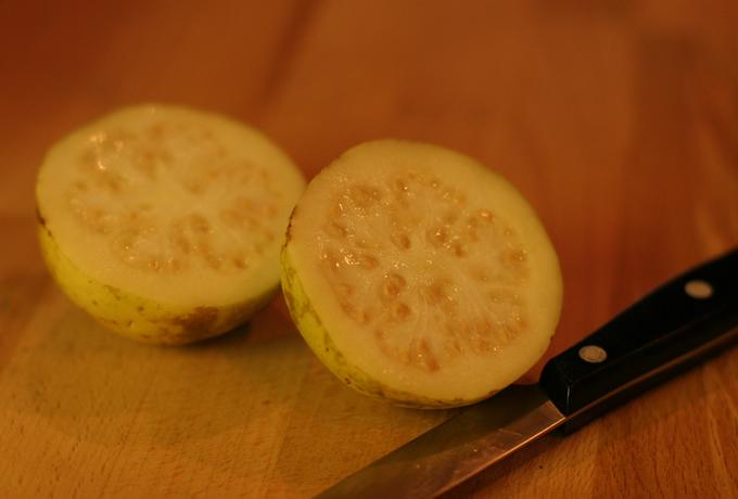 Guava-image